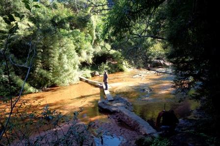 Parque Nacional Amboró, in der Nähe von Santa Cruz. 2 Tage lang mit Machete durch den Dschungel